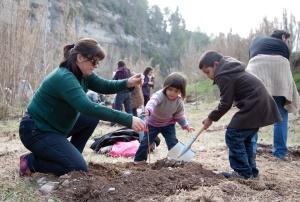 Voluntaris plantant a MSB