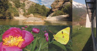 biodiversitat